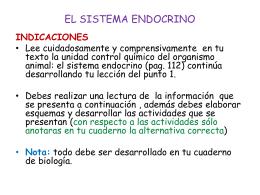 EL SISTEMA ENDOCRINO - Prescott The Anglo American …