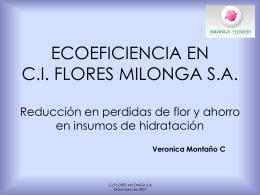PROYECTO DE ECOEFICIENCIA EN C.I. FLORES MILONGA …