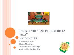 """Proyecto: """"Las flores de la vida"""" Evidencias"""