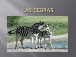 Las cebras - IES Universidad Laboral Zamora