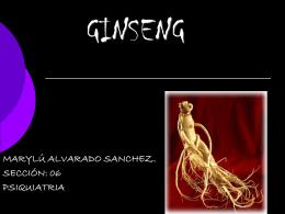GINSENG - Seccionseis's Weblog