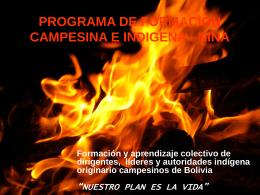 Programa NINA