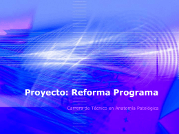 Proyecto: Reforma Programa