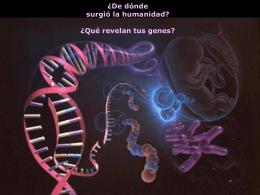 Que revelan tus genes?