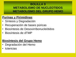METABOLISMO DE NUCLEOTIDOS