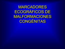MARCADORES ECOGRAFICOS 11