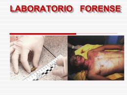 SEROLOGIA FORENSE - Justicia Forense