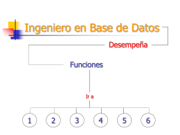 Ingeniero en Base de Datos