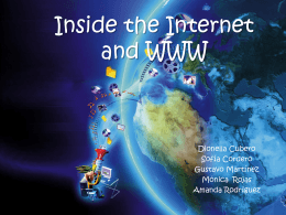 Inside the Internet and WWW - tisgpal1-3