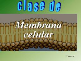 Diapositiva 1 - biologiacervantes