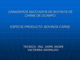 GANADEROS ASOCIADOS DE BOVINOS DE CARNE DE …