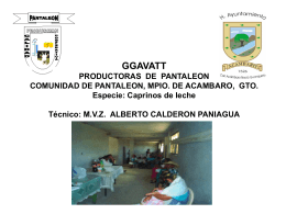 GGAVATT PRODUCTORAS DE PANTALEON COMUNIDAD …
