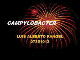 CAMPYLOBACTER - Maria Cristina Vasquez
