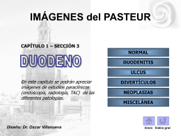 DUODENO - Hospital Pasteur