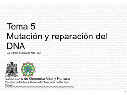 Diapositiva 1 - LGVH
