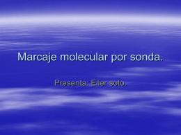 Marcaje molecular por sonda.