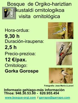 Bosque de Orgiko-hariztian Ikustaldi ornitologikoa visita