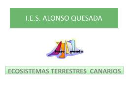 LOS ECOSISTEMAS TERRESTRES CANARIOS