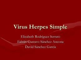 Virus Herpes Simple