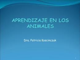 APRENDIZAJE - Facultad de Ciencias Veterinarias