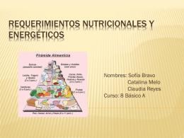 Requerimientos nutricionales y energeticos