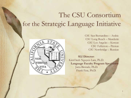 The Southern CSU Consortium Center for Strategic …