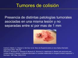 Diapositiva 1 - PIEL