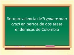 Seroprevalencia deTrypanosoma cruzi en perros de dos …