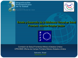 Informe de Avance BVSF MX-EU