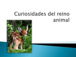 Curiosidades del reino animal