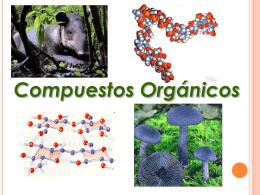 Compuestos Organicos - fundamentosdebiologia