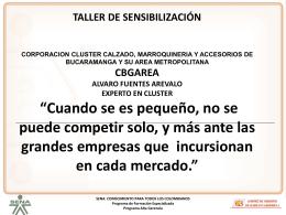 INDICE - Cluster Calzado Bucaramanga