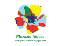 Plantas felices