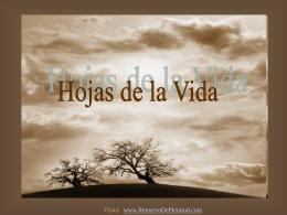 HOJAS DE LA VIDA