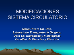 MODIFICACIONES SISTEMA CIRCULATORIO: FLUJO …