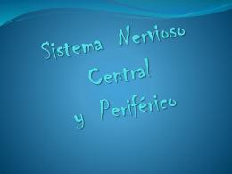 SISTEMA NERVIOSO CENTRAL - Espacio de Eddy Ramiro | …