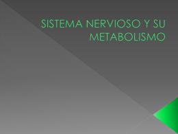SISTEMA NERVIOSO Y SU METABOLISMO
