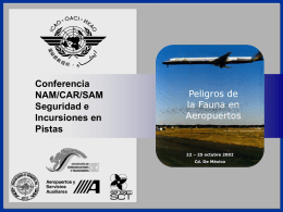 ICAO NAM/CAR/SAM Runway Safety/Incursion Conference