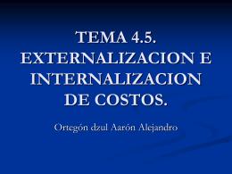 TEMA 4.5. EXTERNALIZACION E INTERNALIZACION DE …