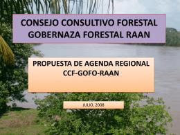 CONSEJO CONSULTIVO FORESTAL GOBERNAZA …