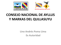 CONSEJO NACIONAL DE AYLLUS Y MARKAS DEL …