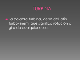 TURBINA DE BULBO