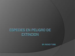 Especies en peligro de extincion By: Rickey Tubb