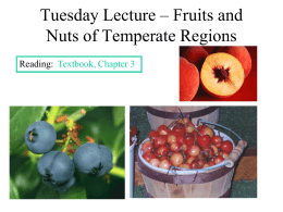 Tuesday Lecture – Fruits and Nuts of Temperate Regions
