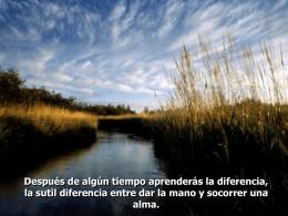 www.anech-chapingo.org.mx