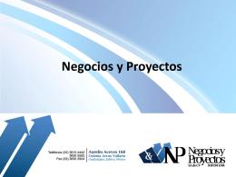 Negocios y proyectos