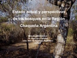 Bosques nativos de Argentina