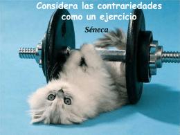 Considera las contrariedades como un ejercicio