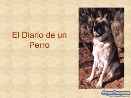 Diario de un Perro - PowerPoints de Humor, graciosos