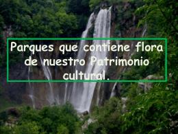 Parques que contiene flora de nuestro Patrimonio cultural.